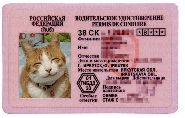 Поздравление с получением водительского удостоверения